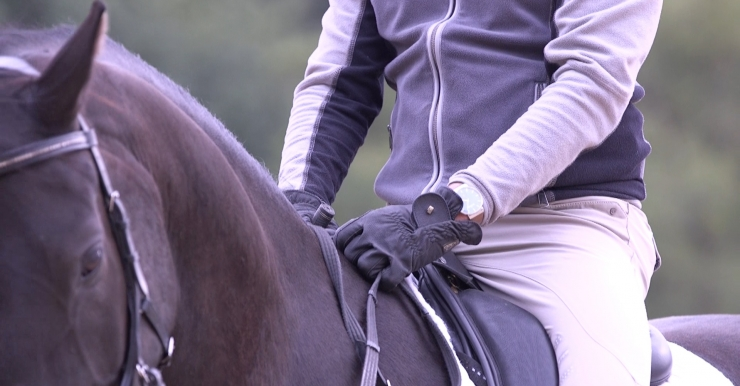 test hest og rytters balance